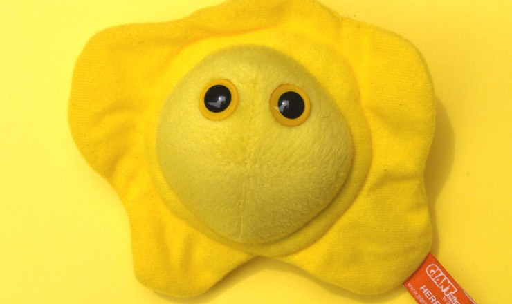 A photo of a stuffed toy representing a herpes virus. It looks like a fried egg, is bright yellow, and has two big yellow eyes.