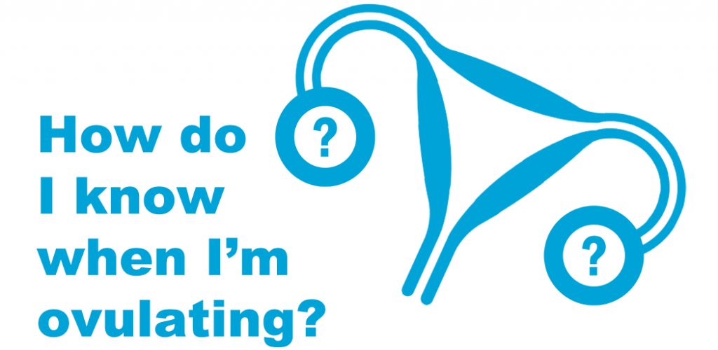 "White background. Blue text on the left reads ""How do I know when I'm ovulating?"" On the right is a blue icon of a uterus with fallopian tube and ovaries. Inside the ovaries are two blue question marks."